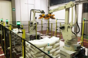 Palletising arm robots at the end of the production line at Sabic Italy