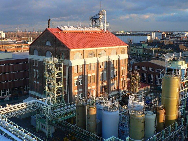 Frankfurt_Plant.jpg